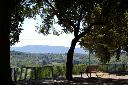 Tuscan landscape tree and bench close-up view     photo