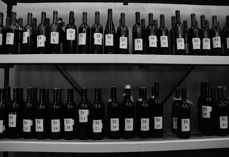 bootle: Wine exhibition