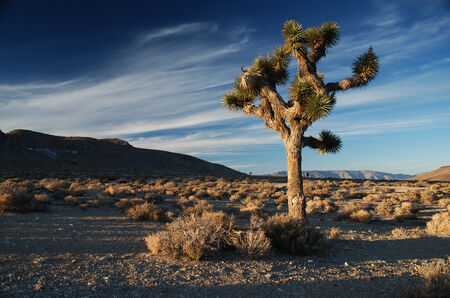 Late afternoon in Death Valley