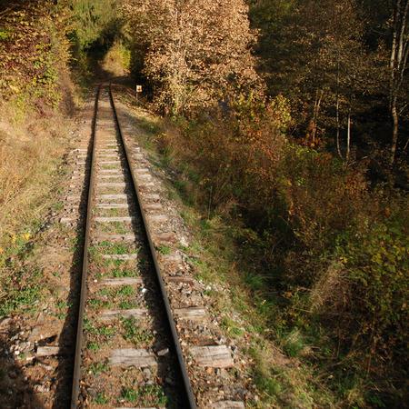 narrow gauge: Narrow gauge railway in Slovakia Stock Photo