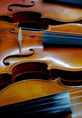 violins: Curves of violins