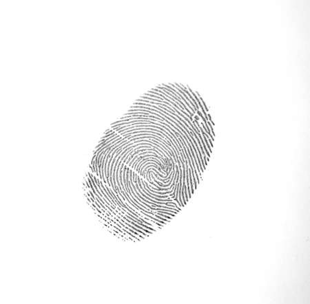 The fingerprint trace secured by the police at the scene.