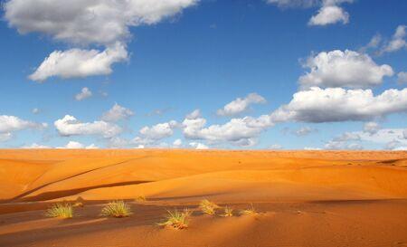 stillness: Desert Stock Photo