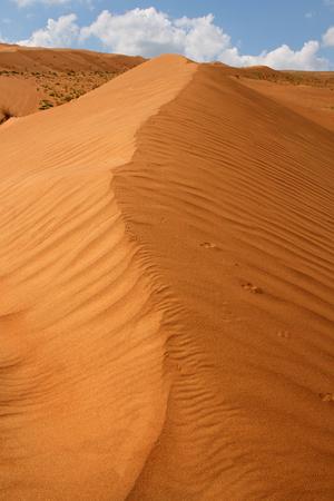 stillness: Desert dunes Stock Photo