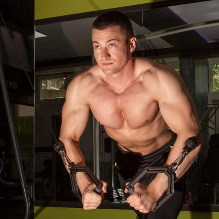 bodybuilder training: Bodybuilder training hard