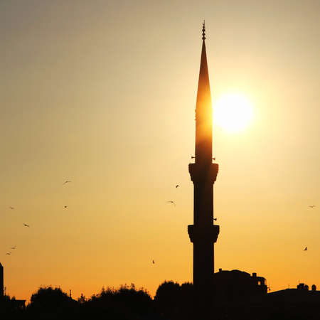 minaret: Blue mosque minaret in sunset