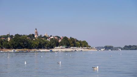 Zemun, 세르비아, 앞에서 갈매기와 다뉴브 강에서 볼