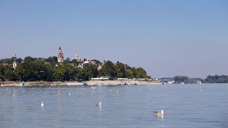 Zemun,Serbia,view from the river Danube,with seagulls in the front