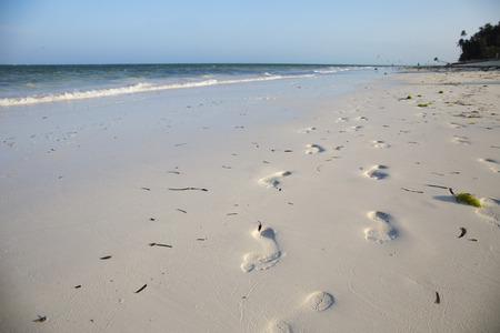 Footprints in the white sand,Paje beach,Zanzibar 스톡 콘텐츠