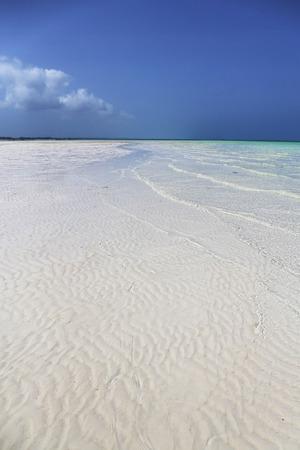 Amazing beach with white sand in Zanzibar,Tanzania