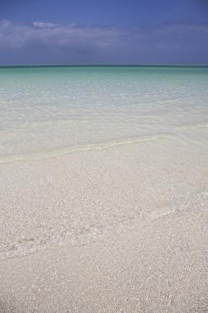 Amazing Beach with White Sand Zanzibar,Tanzania