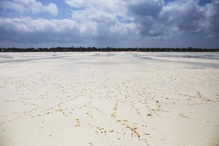 Amazing Beach with White Sand at low tide,Zanzibar,Tanzania 스톡 콘텐츠