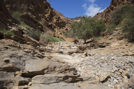 Beautiful nature in Wadi,sultanate of Oman 스톡 콘텐츠