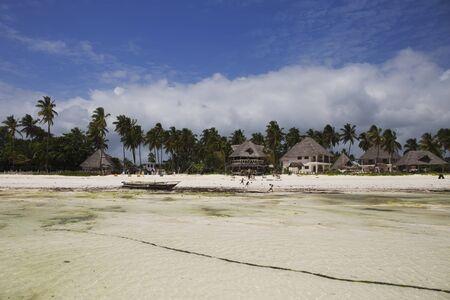 White sands beach with village and palm trees  in Zanzibar,Tanzania