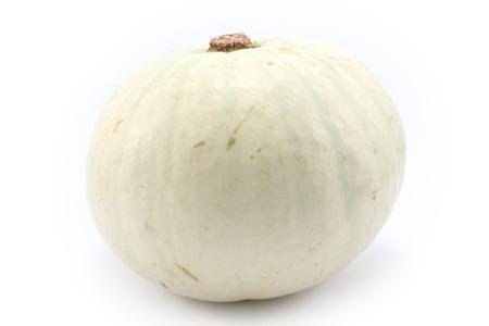 mini farm: White pumpkin. Isolated on white background