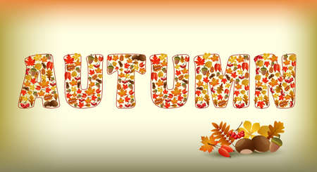 autumn food: Autumnal background with autumn text and autumnal elements