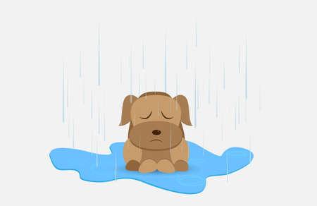 Homeless dog in rainy day Illustration