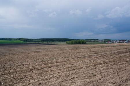 처음에는 샘에 밀과 감자가 심어지고 땅은 아름답고 신선한 녹색이됩니다. 스톡 콘텐츠