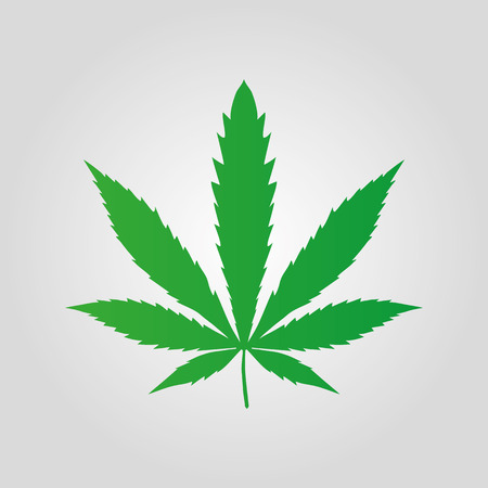 Vector cannabis leaf on white background Marijuana