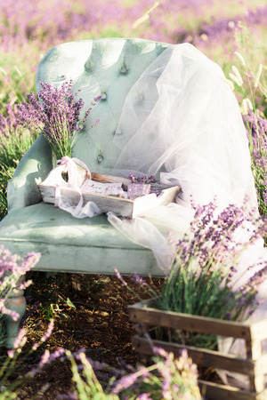 Chair decoration in purpur lavender field on golden sunset.Location Crimea