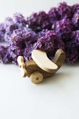 Wooden toy in the beautiful violet lilac on a white background 版權商用圖片 - 122685914