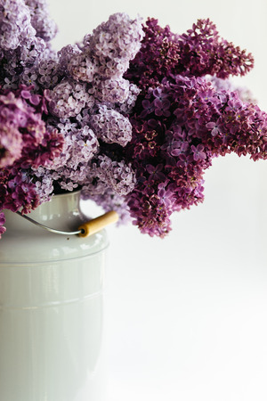Beautiful purple bouquet of lilac flowers in a stylish vase on a white background Imagens