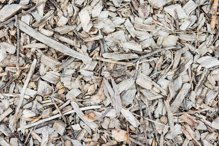 natural wood chips, the texture of the chips, tree bark Reklamní fotografie