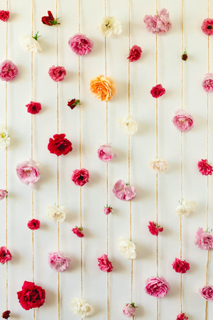 stunning floral texture of rose buds on white wall, nature flowers