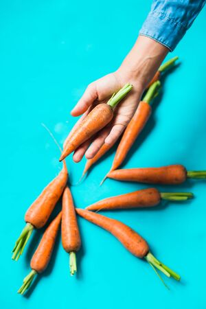 A bunch of fresh carrots in hand on blue background. Rustic style. Farming. Reklamní fotografie
