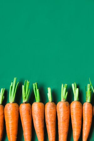 several fresh carrots lie in a row on a green background.. Rustic style. Farming.