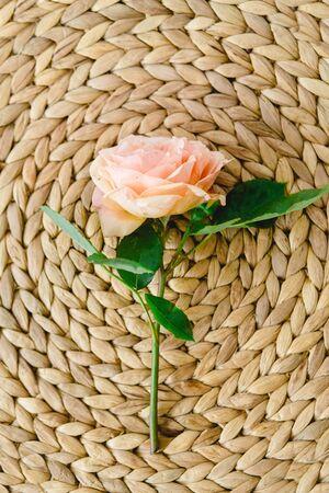 Coloful roses in vase on a nature wicker napkin on white background Reklamní fotografie