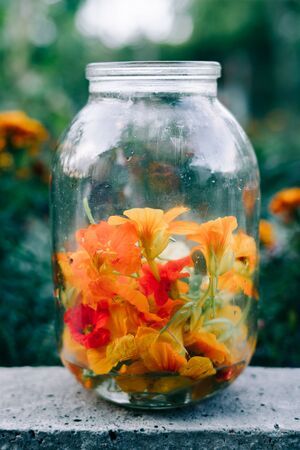 edible multicolored nasturtium flowers in a glass jar