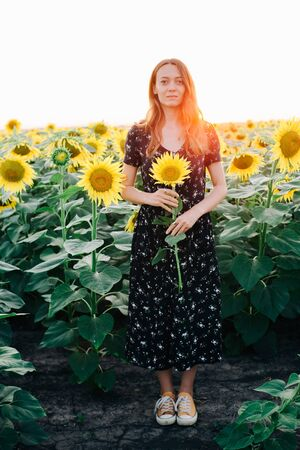 young beautiful girl in a field among the flowers of sunflower Standard-Bild - 139564063