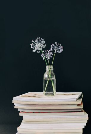 three purple round flower in a transparent glass jar on a stack of magazines on a black background. isolated 免版税图像 - 139601891