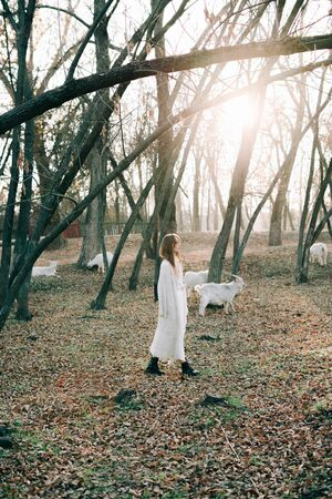 portrait of a young attractive fair haired girl in a light white dress and black shoes in a picturesque forest with goats