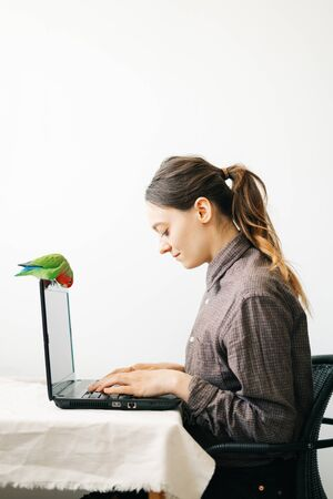 young European woman, working from home during the virus quarantine, on her laptop.a small green lovebird parrot sits on a laptop monitor.A cosy working place,the concept of remote work