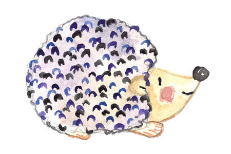 Watercolor cute blue hedgehog on white background. Hand drawn illustration with funny animal.