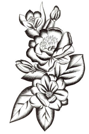 Black tattoo composition with flowers, buds and leaves on white background