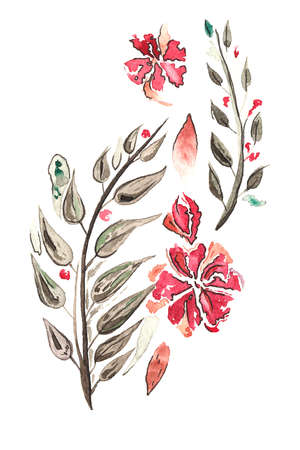 Watercolor Flowers and Leaves on white background