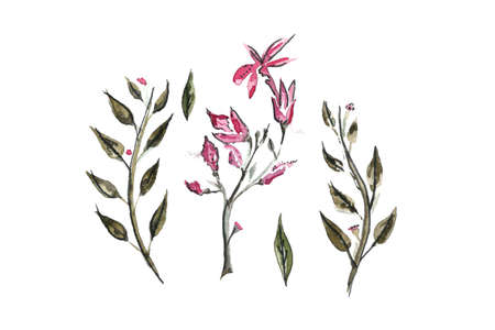 Watercolor branches with pink flowers and green leaves. Suitable for postcards, holiday Standard-Bild - 133503367