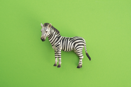 An zebra animal is a children's toy. Plastic figurine for the game. Green background. Farm and the zoo. Stock fotó