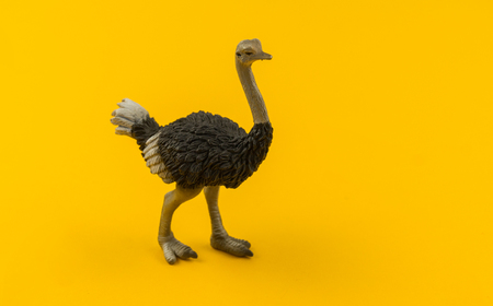 plastic ostrich toy on a yellow background. African animal for a child. Copy space. 版權商用圖片