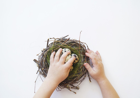 Children's hands hold an Easter nest with eggs. View from above. Child. Boy. Hands of the child. Spring. White background.