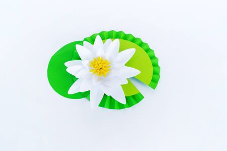 Waterlily flower made of paper. white background. Origami hobby. Gentle petal. Marsh with frogs tradition.