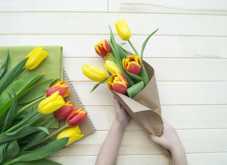 Hands of a child make a bouquet of tulips. Blue background. Fresh flower. Gift for mom