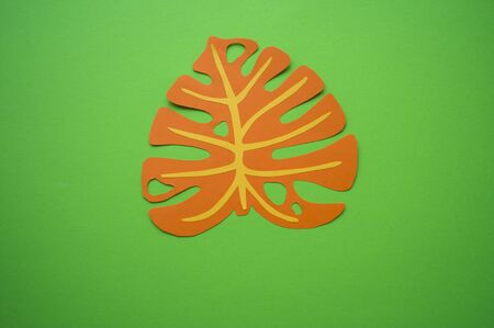 Tropical leaves made of paper. Bright Contrast Background