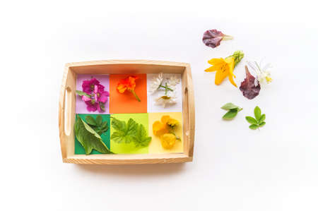 Montessori material is nature flat lay. Children hand sort the flower by color rainbow. Wooden tray on a white background.