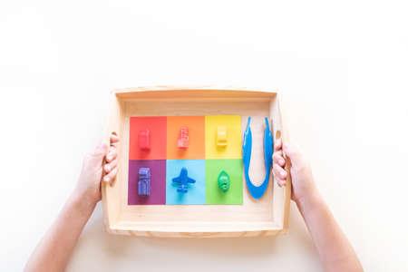 Montessori material sorting by color on white 版權商用圖片