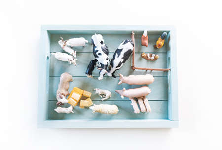 Montessori material farm animals. Education at home. Lesson with children. White background.