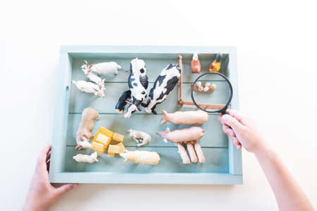 Montessori material farm animals. Education at home. Lesson with children. White background.